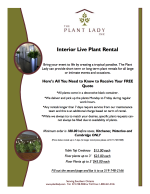 Shot Term Plant Rental